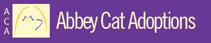 Abbey Cat Adoptions